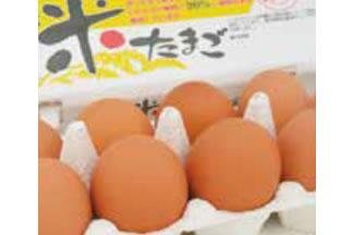 神奈川中央養鶏農協の画像